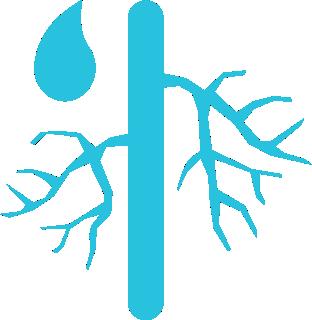 test-zamykanie-naczyn-krwionosnych